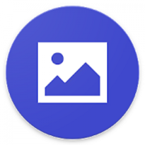 Image Downloader Pro